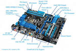 Video Card Asustek Others