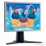 Monitor ViewSonic LCDs and CRTs